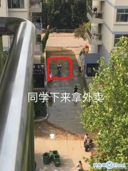 济南大学化粪池炸了 一片翔河