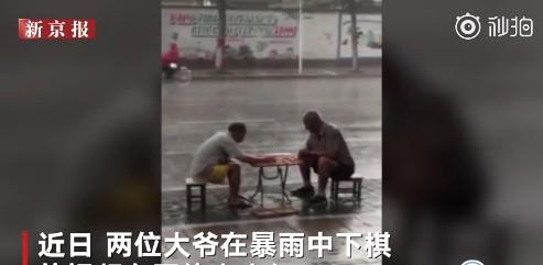 暴雨中下象棋的网红大爷